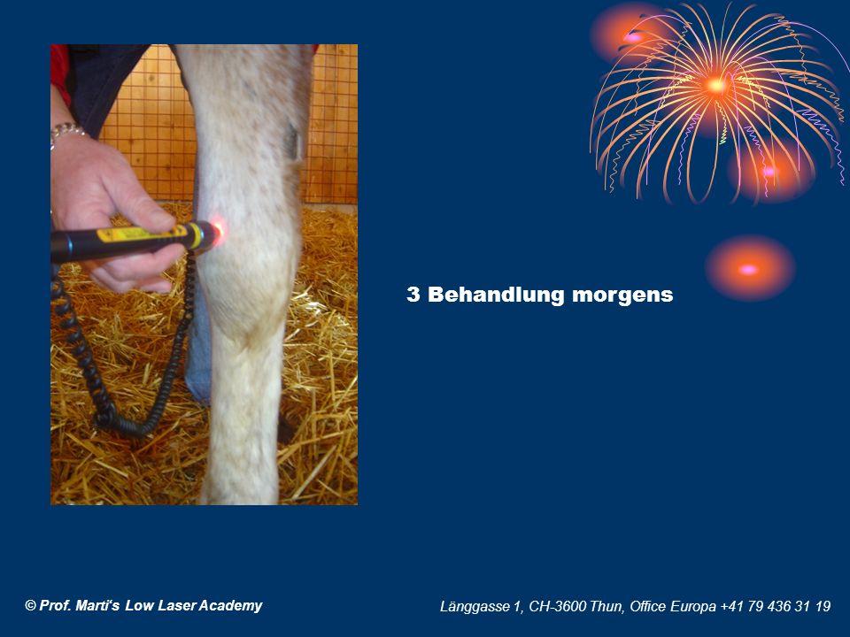 © Prof. Martis Low Laser Academy Länggasse 1, CH-3600 Thun, Office Europa +41 79 436 31 19 3 Behandlung morgens