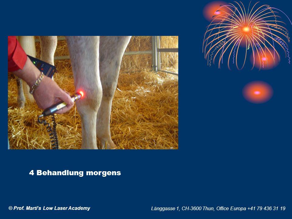 © Prof. Martis Low Laser Academy Länggasse 1, CH-3600 Thun, Office Europa +41 79 436 31 19 4 Behandlung morgens