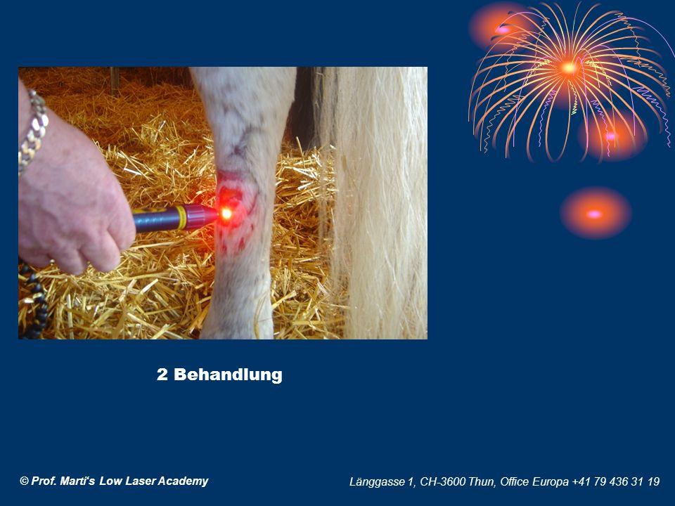 © Prof. Martis Low Laser Academy Länggasse 1, CH-3600 Thun, Office Europa +41 79 436 31 19 2 Behandlung
