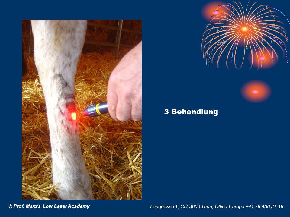 © Prof. Martis Low Laser Academy Länggasse 1, CH-3600 Thun, Office Europa +41 79 436 31 19 3 Behandlung