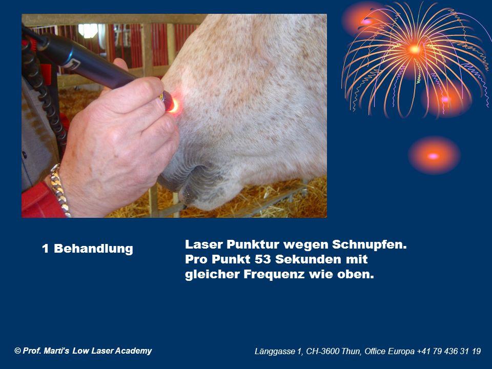 © Prof. Martis Low Laser Academy Länggasse 1, CH-3600 Thun, Office Europa +41 79 436 31 19 1 Behandlung Laser Punktur wegen Schnupfen. Pro Punkt 53 Se