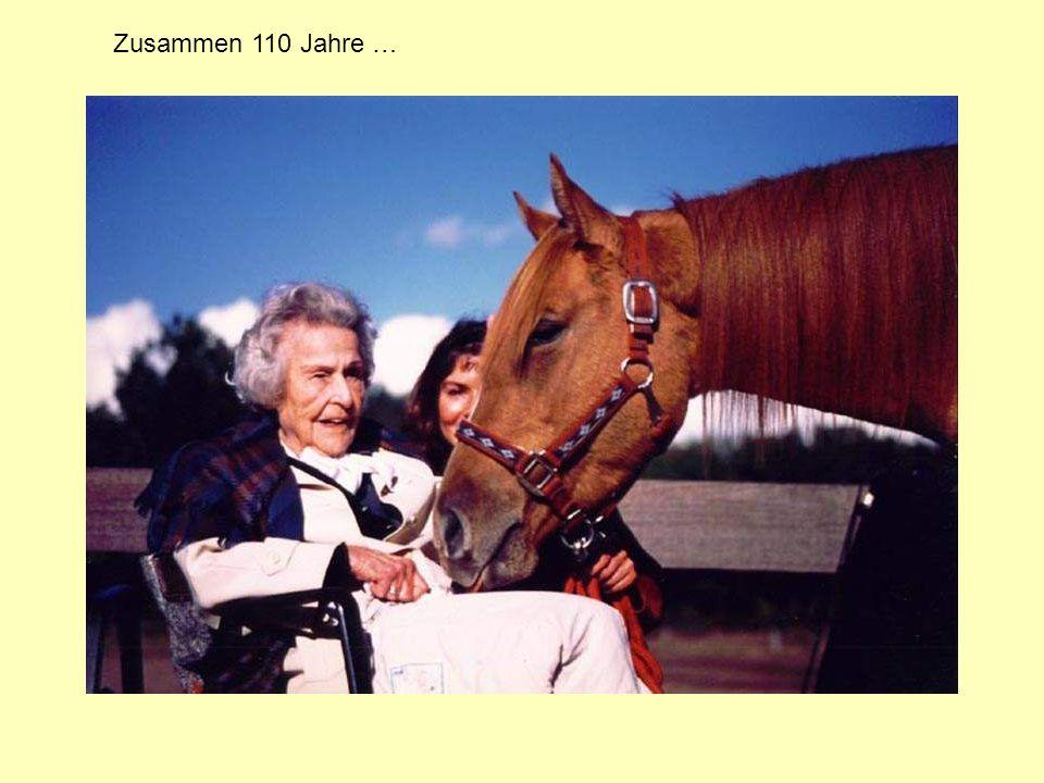 Mir mag es so schlecht gehen, dass ich am liebsten sterben würde … doch habe ich einmal von der Droge Galopp gekostet, fühle ich mit meinem Pferde Momente höchsten Glückes.