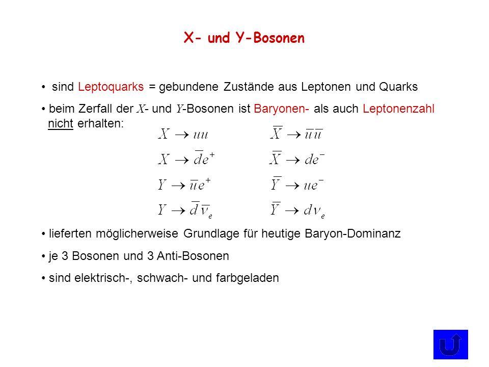 X- und Y-Bosonen sind Leptoquarks = gebundene Zustände aus Leptonen und Quarks beim Zerfall der X - und Y -Bosonen ist Baryonen- als auch Leptonenzahl
