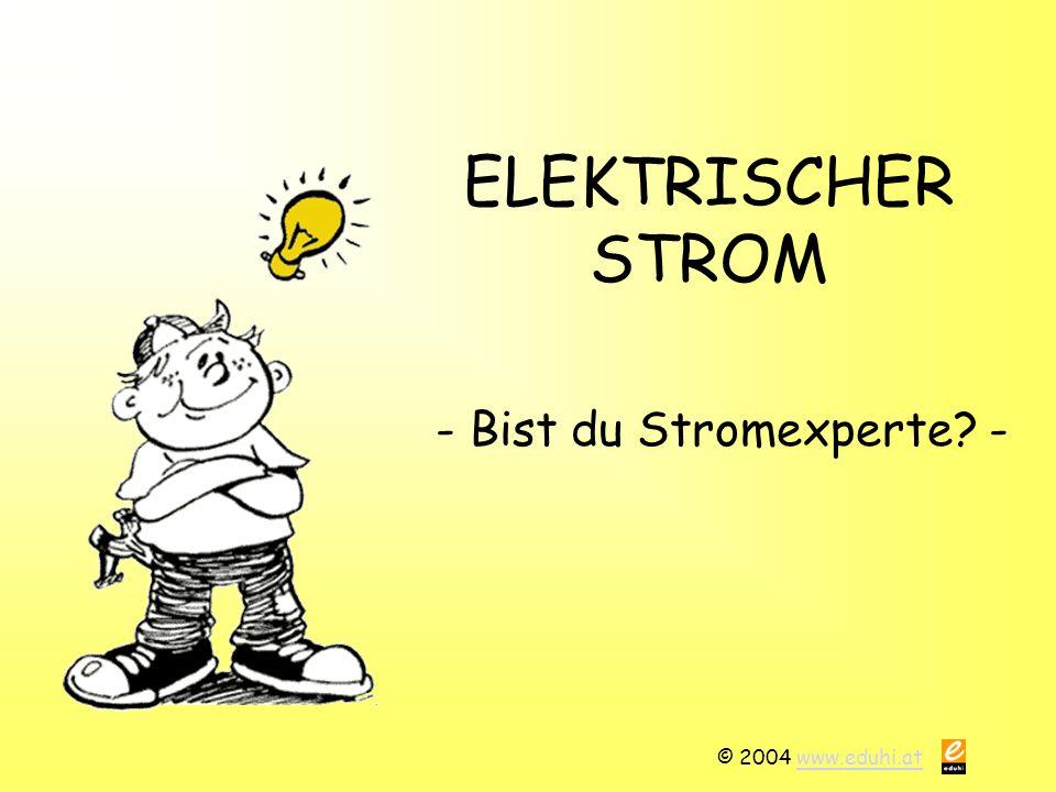 © 2004 www.eduhi.atwww.eduhi.at ELEKTRISCHER STROM - Bist du Stromexperte? -