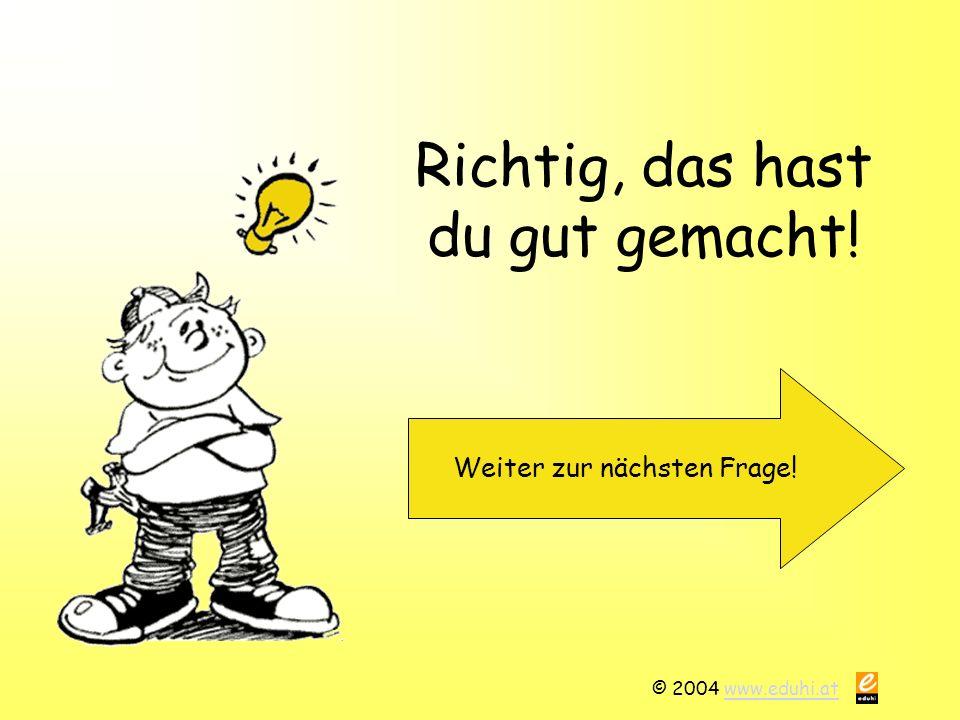© 2004 www.eduhi.atwww.eduhi.at Richtig, das hast du gut gemacht! Weiter zur nächsten Frage!