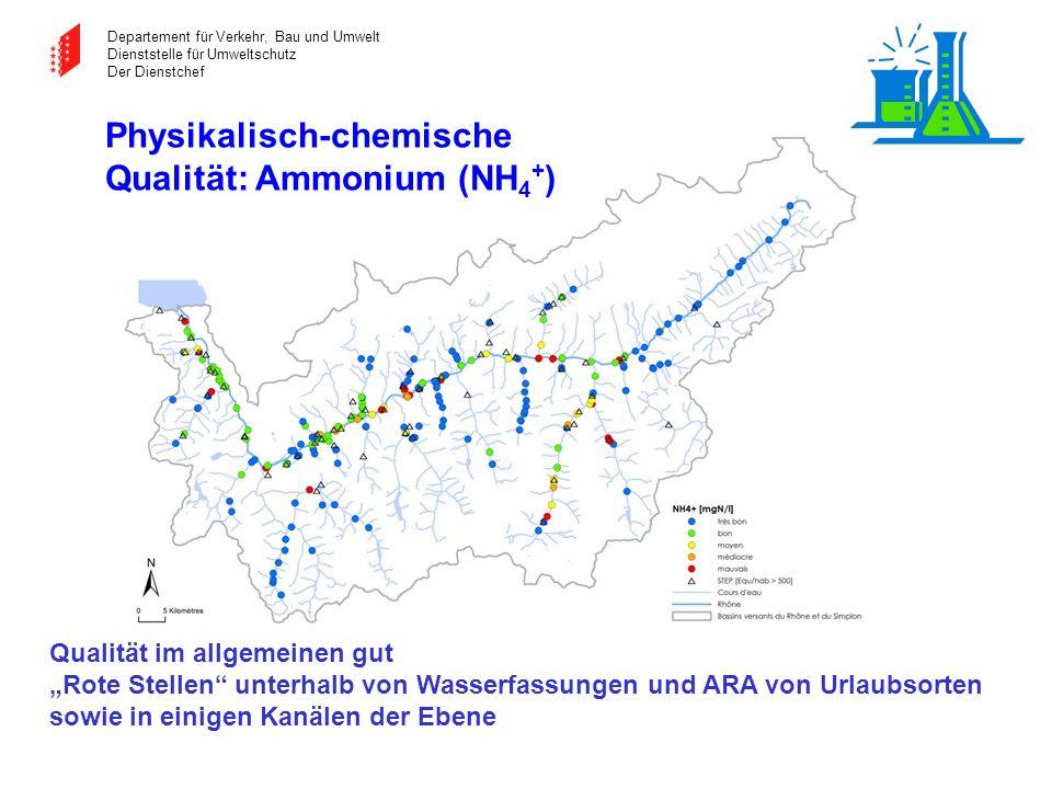 Departement für Verkehr, Bau und Umwelt Dienststelle für Umweltschutz Der Dienstchef Physikalisch-chemische Qualität: Ammonium (NH 4 + ) Qualität im a