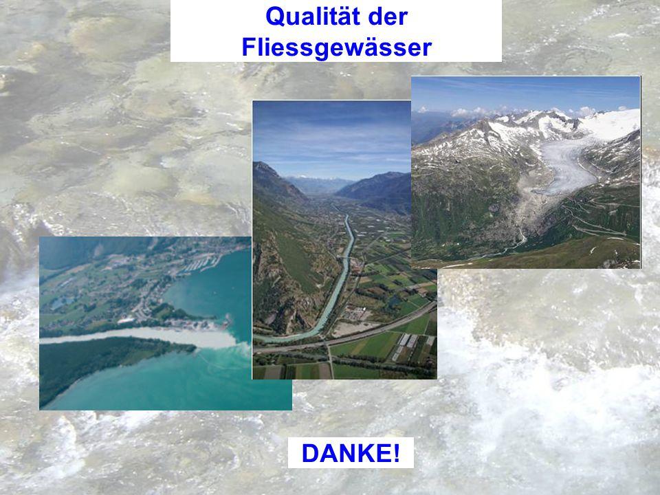 Departement für Verkehr, Bau und Umwelt Dienststelle für Umweltschutz Der Dienstchef DANKE! Qualität der Fliessgewässer