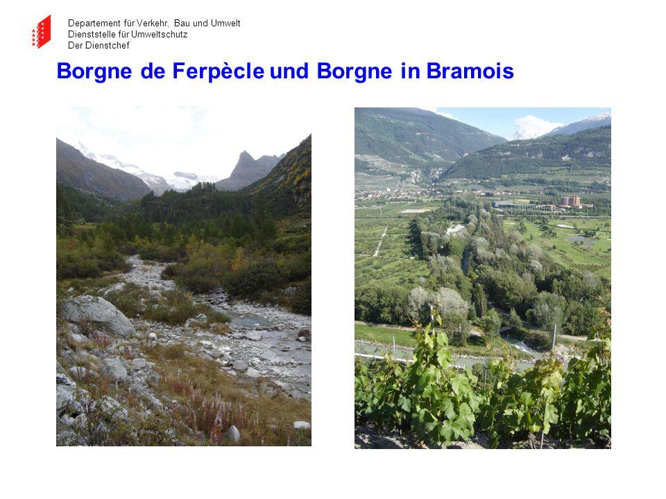 Departement für Verkehr, Bau und Umwelt Dienststelle für Umweltschutz Der Dienstchef Borgne de Ferpècle und Borgne in Bramois