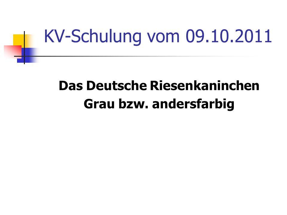 KV-Schulung vom 09.10.2011 Das Deutsche Riesenkaninchen Grau bzw. andersfarbig
