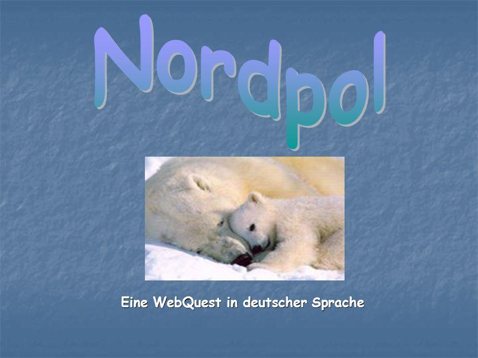 Du hast sicherlich mal über den Nordpol gehört.Der Nordpol ist ein von den 8 Kontinenten.