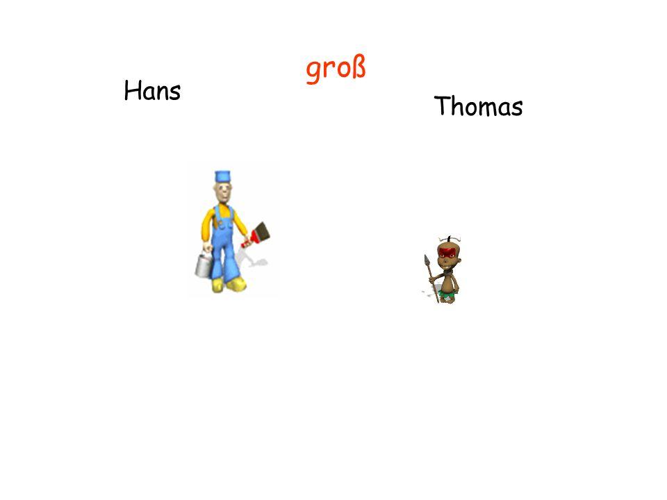 Hans Thomas groß