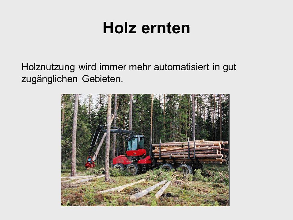 Holz ernten Holznutzung wird immer mehr automatisiert in gut zugänglichen Gebieten.