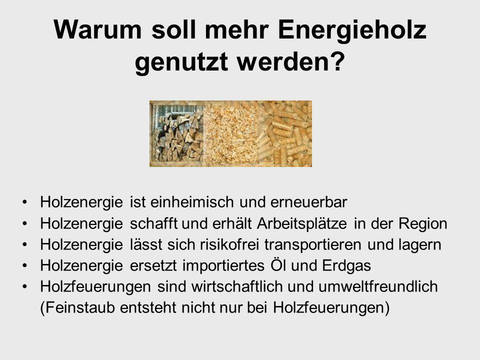 Warum soll mehr Energieholz genutzt werden.