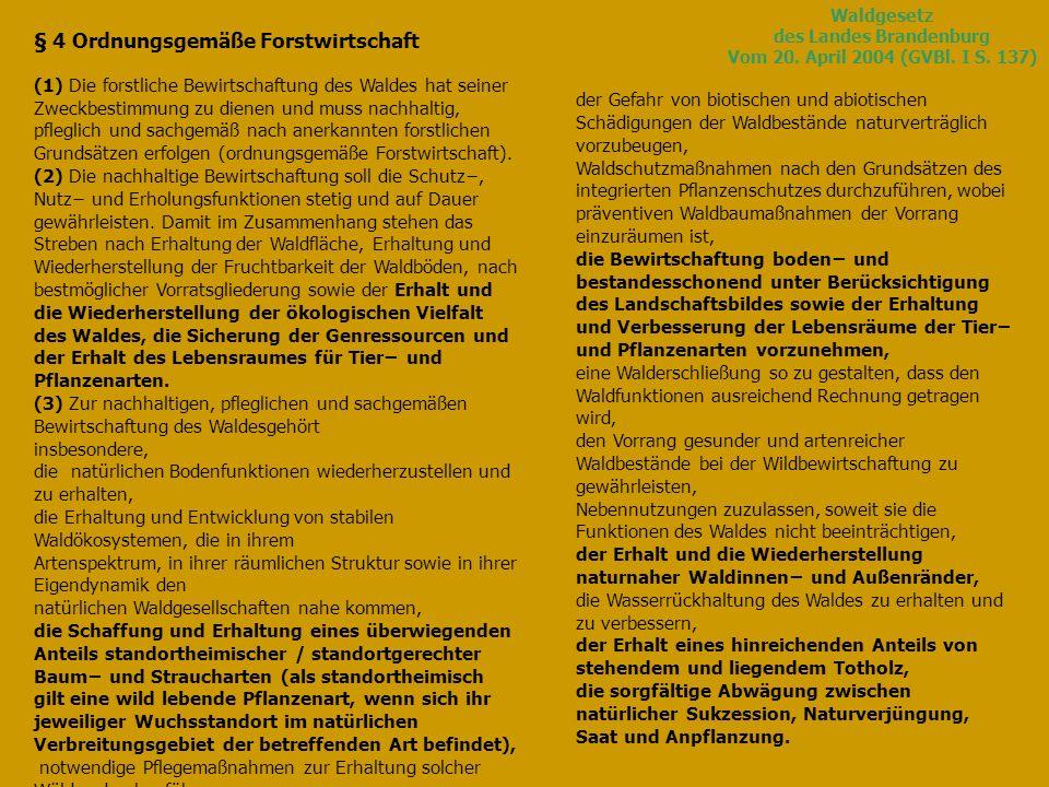 Waldgesetz des Landes Brandenburg Vom 20.April 2004 (GVBl.