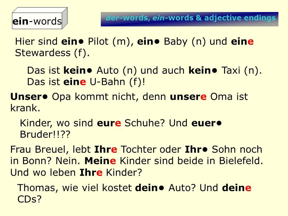 der-words, ein-words & adjective endings Hier sind ein Pilot (m), ein Baby (n) und eine Stewardess (f). Das ist kein Auto (n) und auch kein Taxi (n).