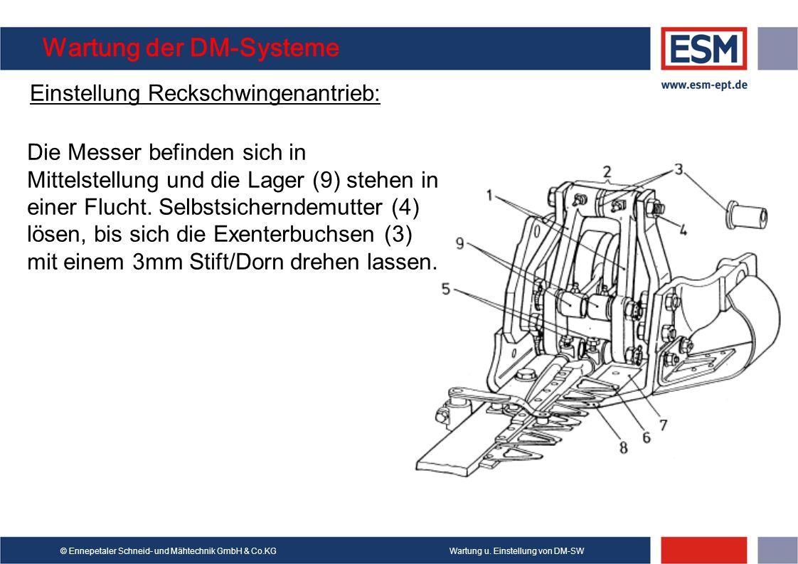 Wartung u. Einstellung von DM-SW© Ennepetaler Schneid- und Mähtechnik GmbH & Co.KG Wartung der DM-Systeme Einstellung Reckschwingenantrieb: Die Messer