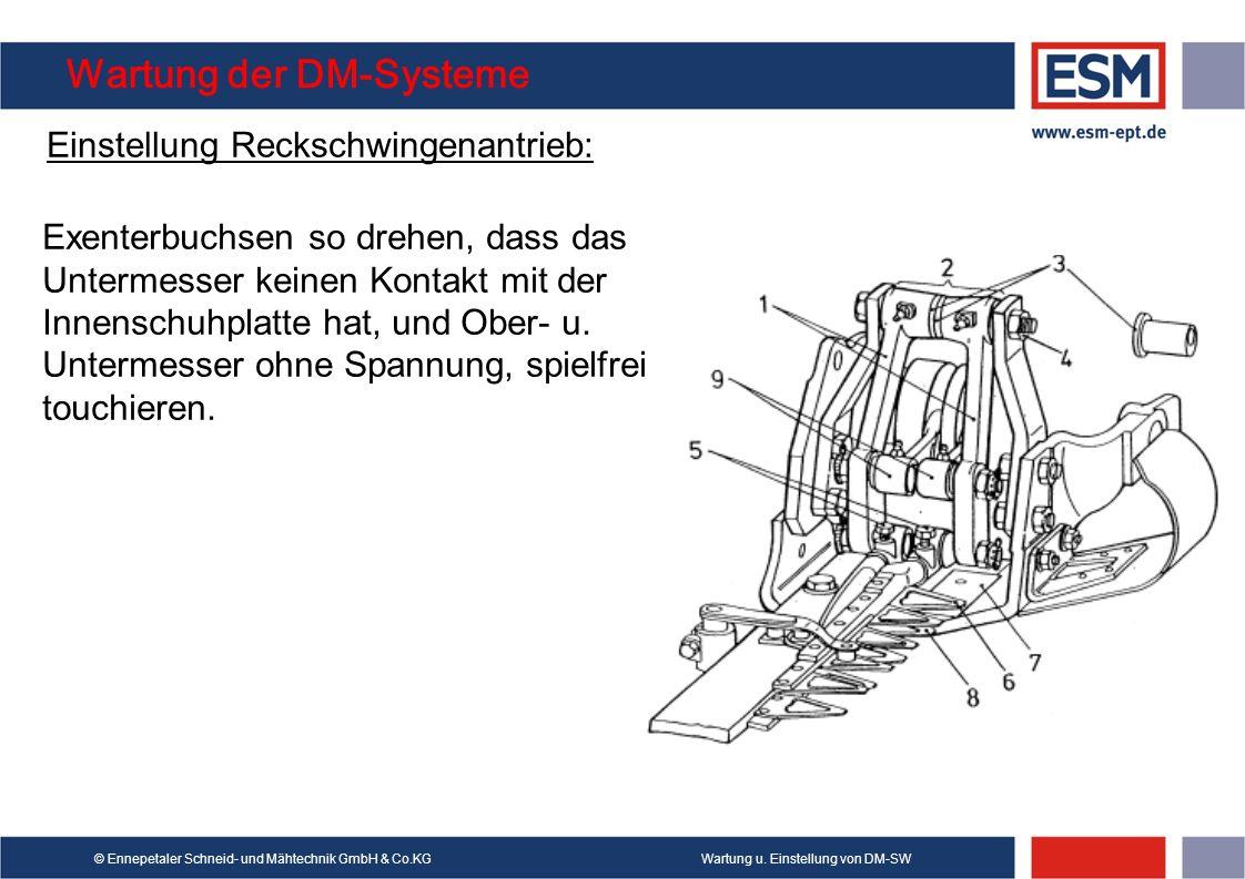Wartung u. Einstellung von DM-SW© Ennepetaler Schneid- und Mähtechnik GmbH & Co.KG Wartung der DM-Systeme Einstellung Reckschwingenantrieb: Exenterbuc