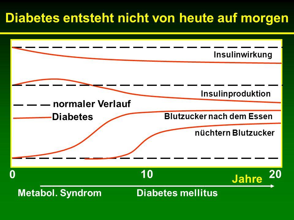 Diabetes entsteht nicht von heute auf morgen Insulinwirkung Insulinproduktion Blutzucker nach dem Essen nüchtern Blutzucker normaler Verlauf Diabetes 0 20 10 Metabol.