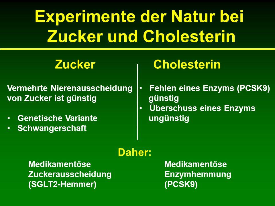 Experimente der Natur bei Zucker und Cholesterin ZuckerCholesterin Vermehrte Nierenausscheidung von Zucker ist günstig Genetische Variante Schwangerschaft Fehlen eines Enzyms (PCSK9) günstig Überschuss eines Enzyms ungünstig Daher: Medikamentöse Zuckerausscheidung (SGLT2-Hemmer) Medikamentöse Enzymhemmung (PCSK9)
