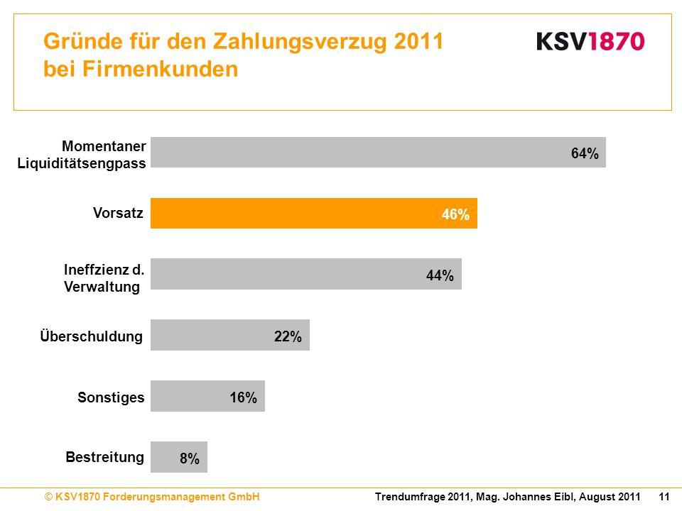 11Trendumfrage 2011, Mag. Johannes Eibl, August 2011© KSV1870 Forderungsmanagement GmbH Gründe für den Zahlungsverzug 2011 bei Firmenkunden 8% 16% 22%