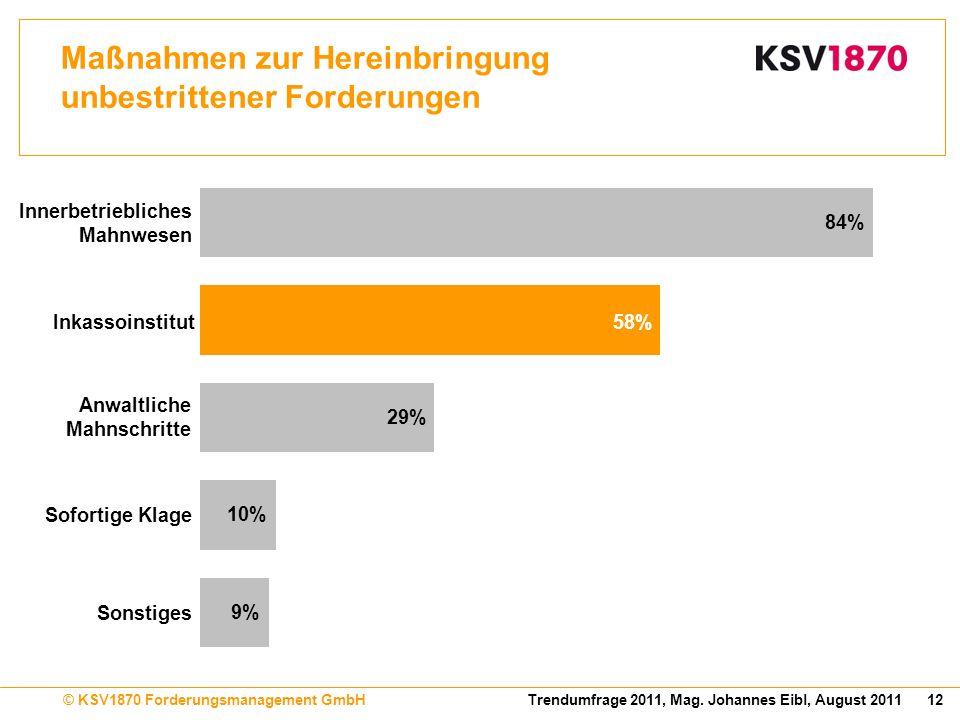 12Trendumfrage 2011, Mag. Johannes Eibl, August 2011© KSV1870 Forderungsmanagement GmbH Maßnahmen zur Hereinbringung unbestrittener Forderungen 84% 9%