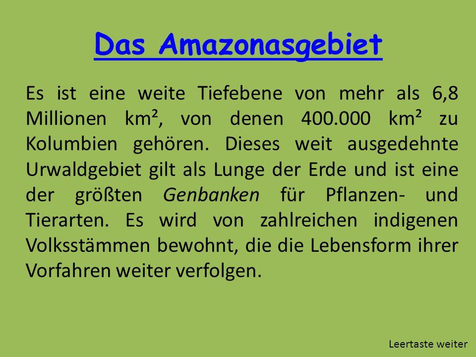 Das Amazonasgebiet Es ist eine weite Tiefebene von mehr als 6,8 Millionen km², von denen 400.000 km² zu Kolumbien gehören. Dieses weit ausgedehnte Urw