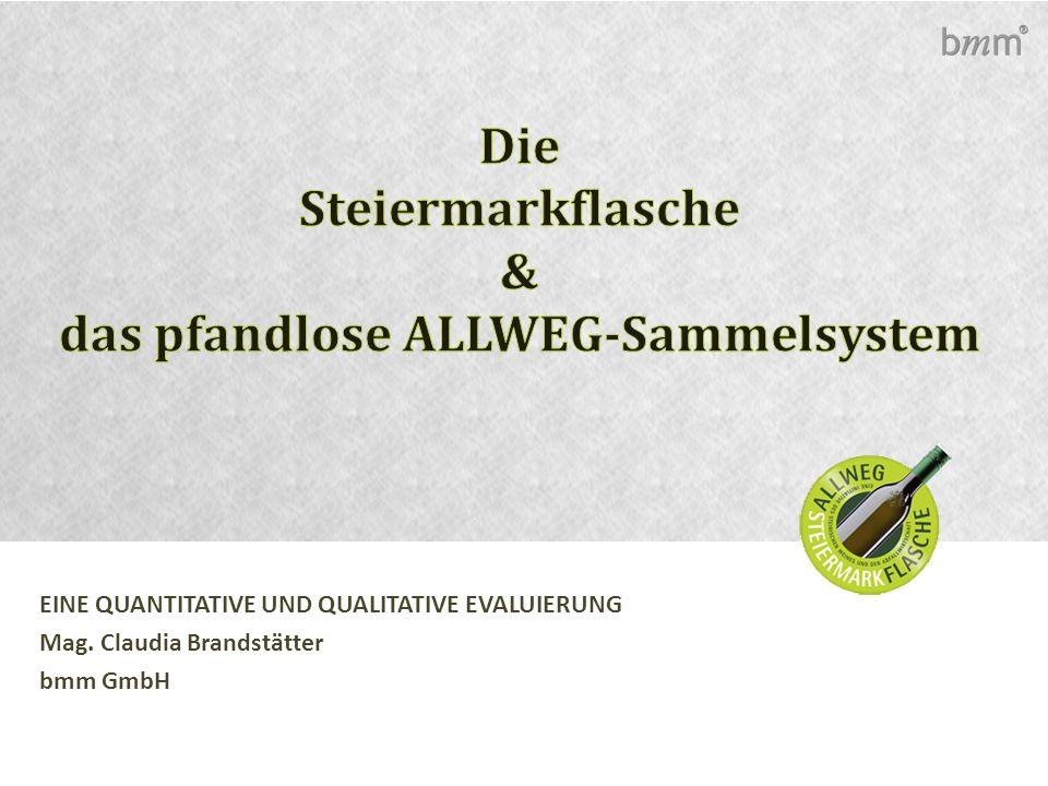 EINE QUANTITATIVE UND QUALITATIVE EVALUIERUNG Mag. Claudia Brandstätter bmm GmbH