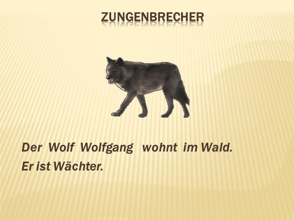 Der Wolf Wolfgang wohnt im Wald. Er ist Wächter.