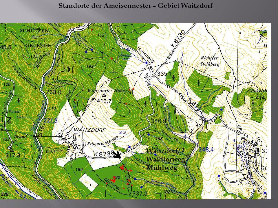 Waitzdorf/ Waldtorweg- Mühlweg Standorte der Ameisennester – Gebiet Waitzdorf