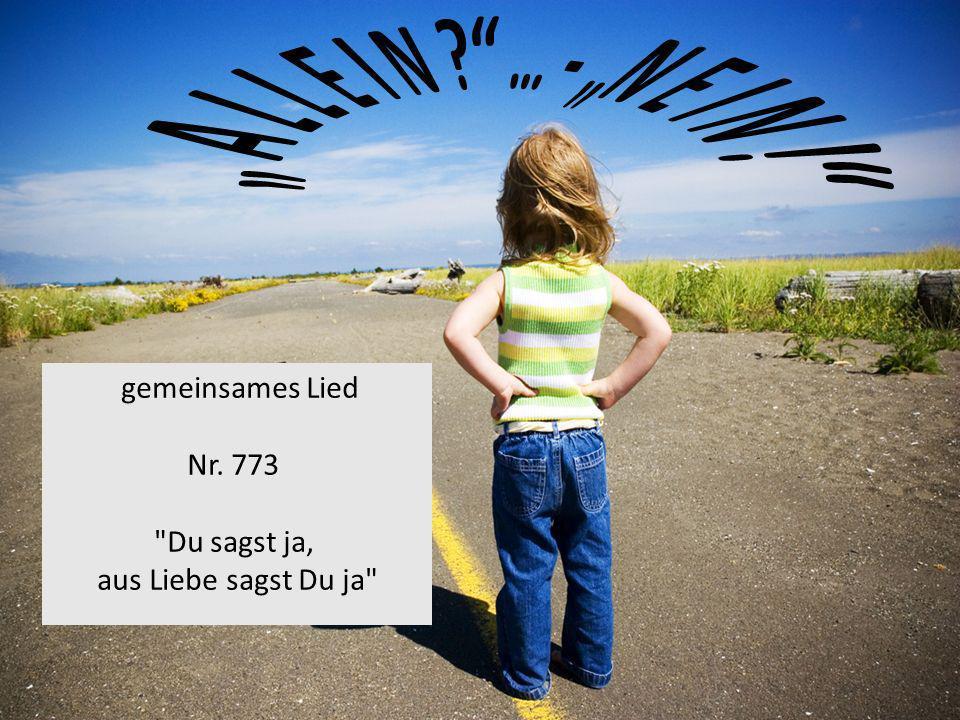 gemeinsames Lied Nr. 773