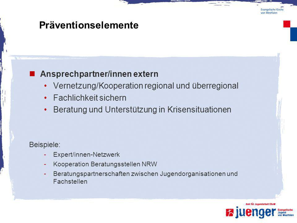 Präventionselemente Ansprechpartner/innen extern Vernetzung/Kooperation regional und überregional Fachlichkeit sichern Beratung und Unterstützung in K