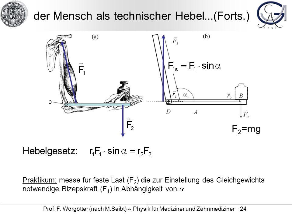 Prof. F. Wörgötter (nach M.Seibt) -- Physik für Mediziner und Zahnmediziner 24 der Mensch als technischer Hebel...(Forts.) F 2 =mg Hebelgesetz: Prakti