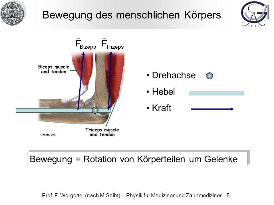Prof. F. Wörgötter (nach M.Seibt) -- Physik für Mediziner und Zahnmediziner 5 Bewegung des menschlichen Körpers Drehachse Hebel Kraft Bewegung = Rotat