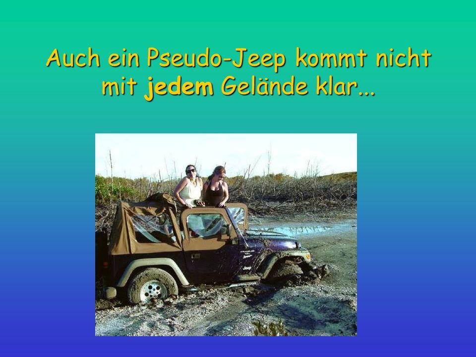 Auch ein Pseudo-Jeep kommt nicht mit jedem Gelände klar...