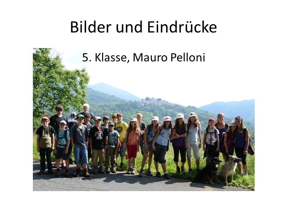 Bilder und Eindrücke 5. Klasse, Mauro Pelloni