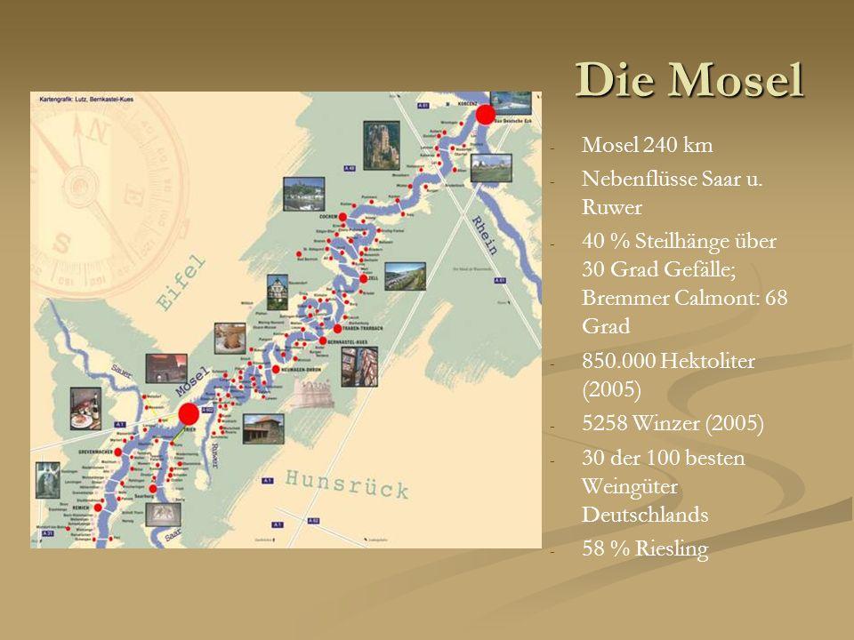 Die Mosel - Mosel 240 km - Nebenflüsse Saar u. Ruwer - 40 % Steilhänge über 30 Grad Gefälle; Bremmer Calmont: 68 Grad - 850.000 Hektoliter (2005) - 52