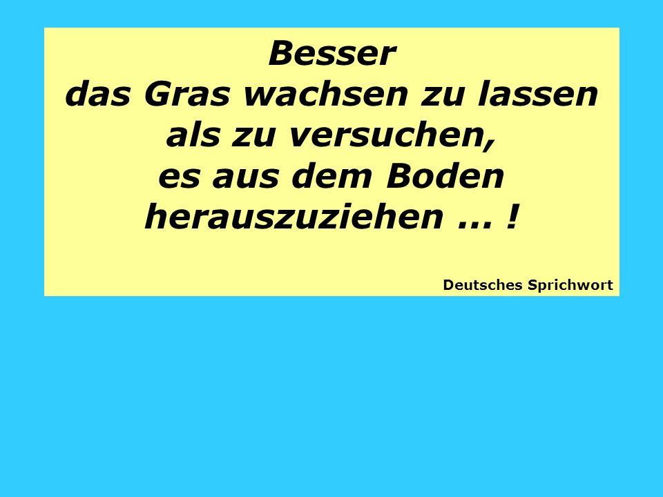 Besser das Gras wachsen zu lassen als zu versuchen, es aus dem Boden herauszuziehen... ! Deutsches Sprichwort