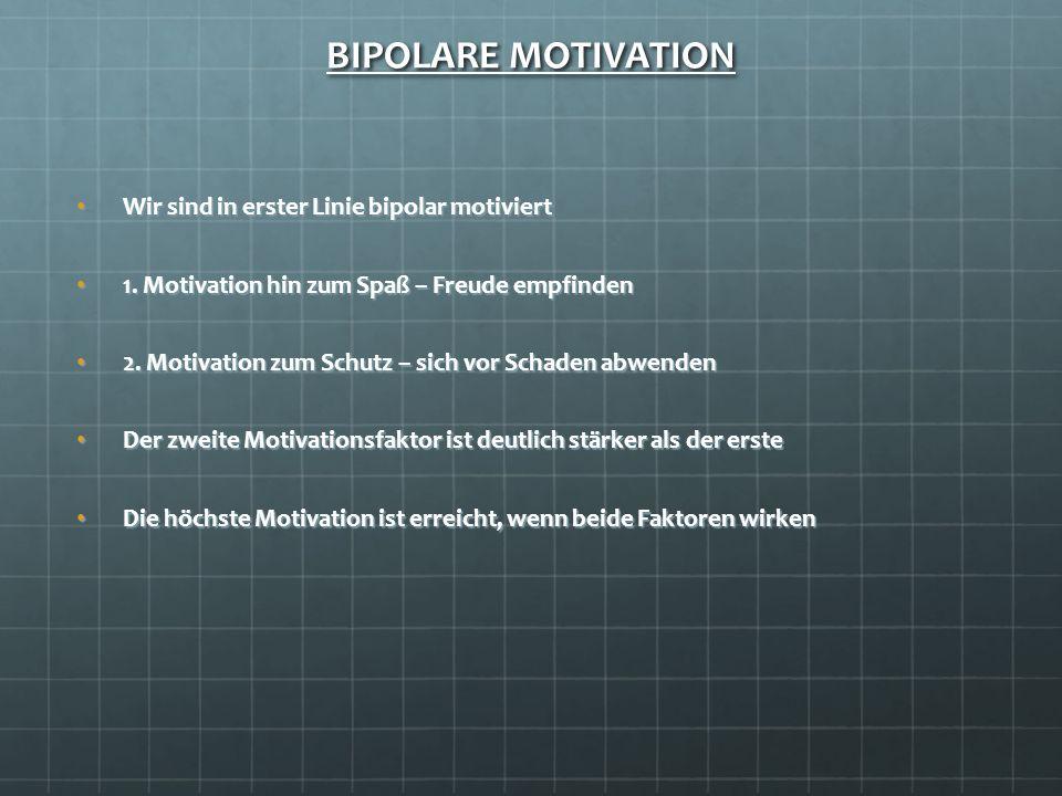 BIPOLARE MOTIVATION Wir sind in erster Linie bipolar motiviertWir sind in erster Linie bipolar motiviert 1. Motivation hin zum Spaß – Freude empfinden
