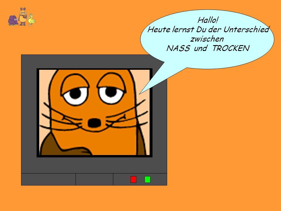 Hallo! Heute lernst Du der Unterschied zwischen NASS und TROCKEN