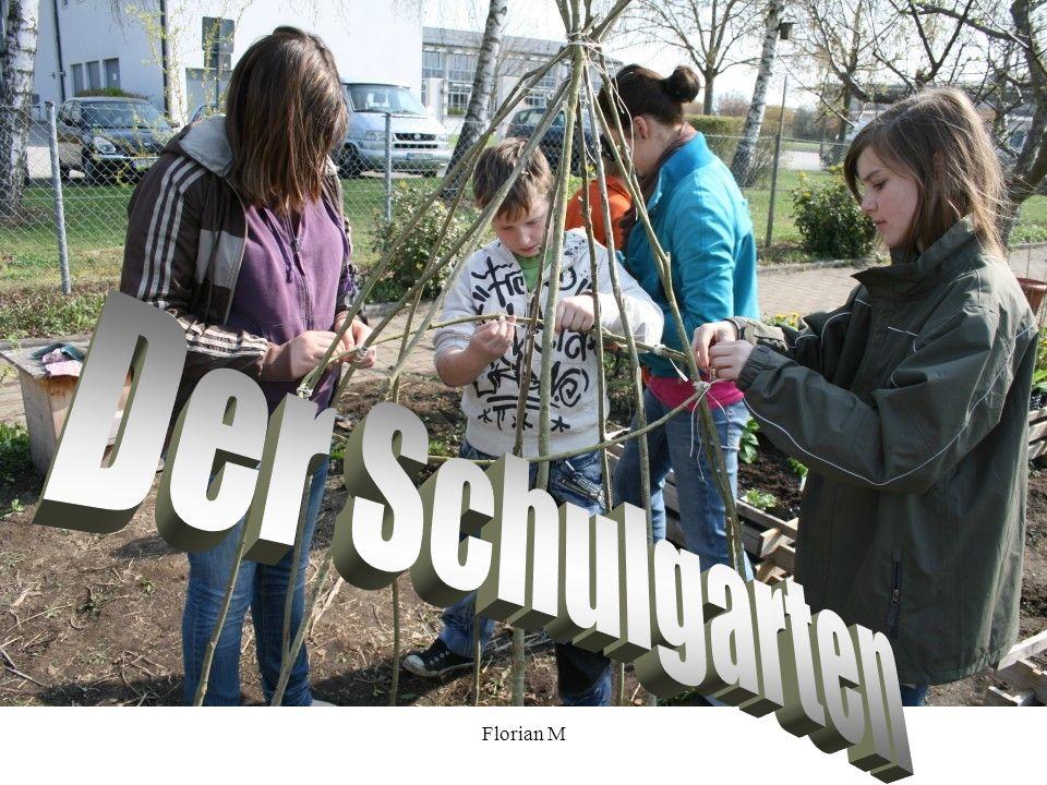 Florian M. Der Schulgarten