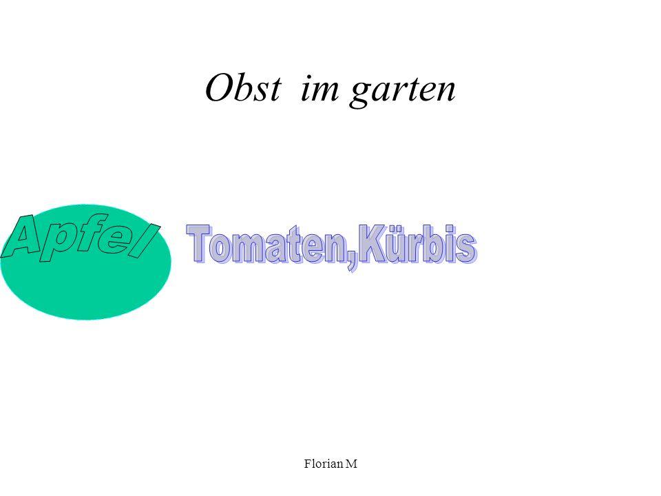 Florian M Blumen im Schulgarten