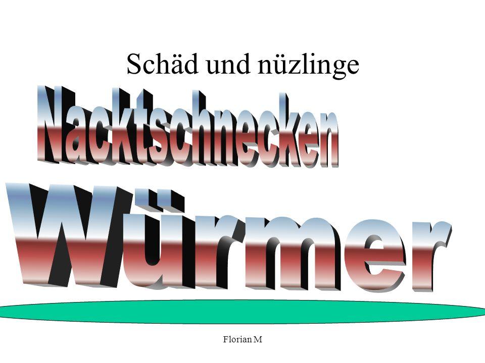 Florian M Geerntetes obst