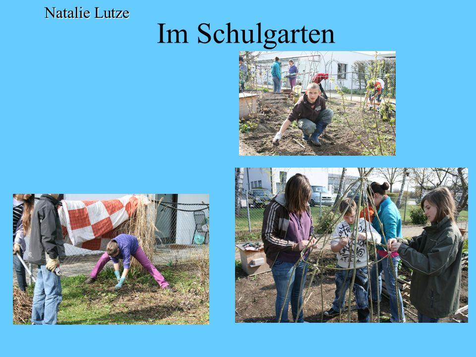 Der Schulgarten Natalie Lutze