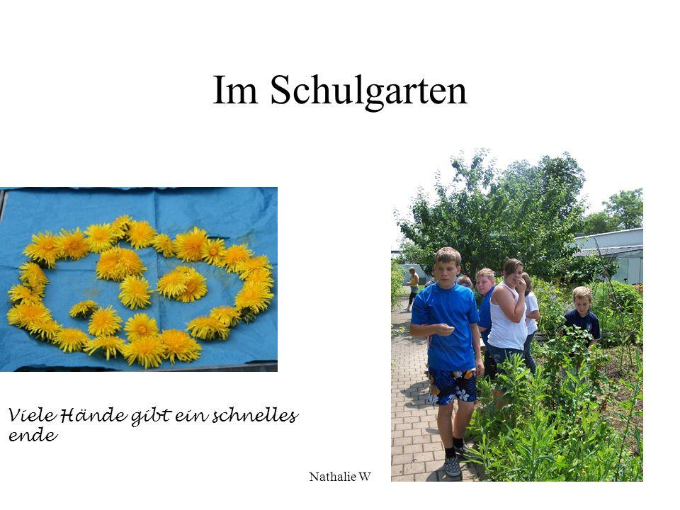 Nathalie W Der Schulgarten