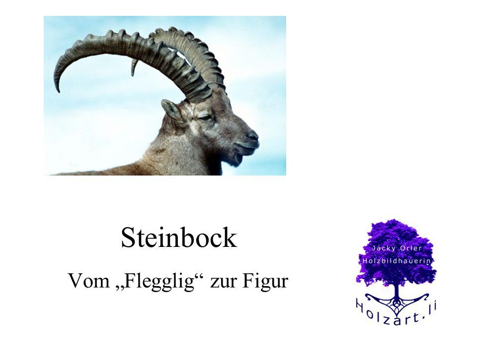 Steinbock Vom Flegglig zur Figur