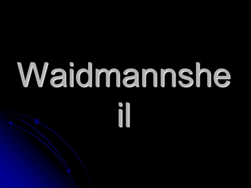 Waidmannshe il