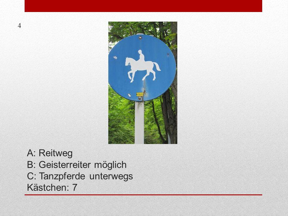 A: Reitweg B: Geisterreiter möglich C: Tanzpferde unterwegs Kästchen: 7 4