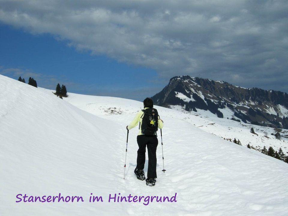 Stanserhorn im Hintergrund