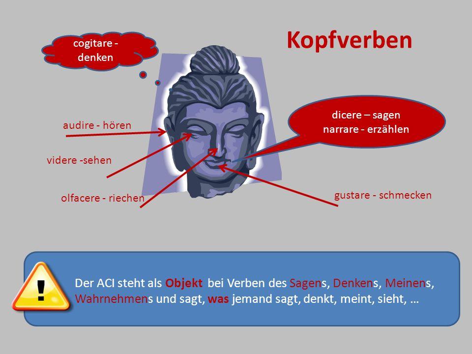 Der ACI steht als Objekt bei Verben des Sagens, Denkens, Meinens, Wahrnehmens und sagt, was jemand sagt, denkt, meint, sieht, … dicere – sagen narrare