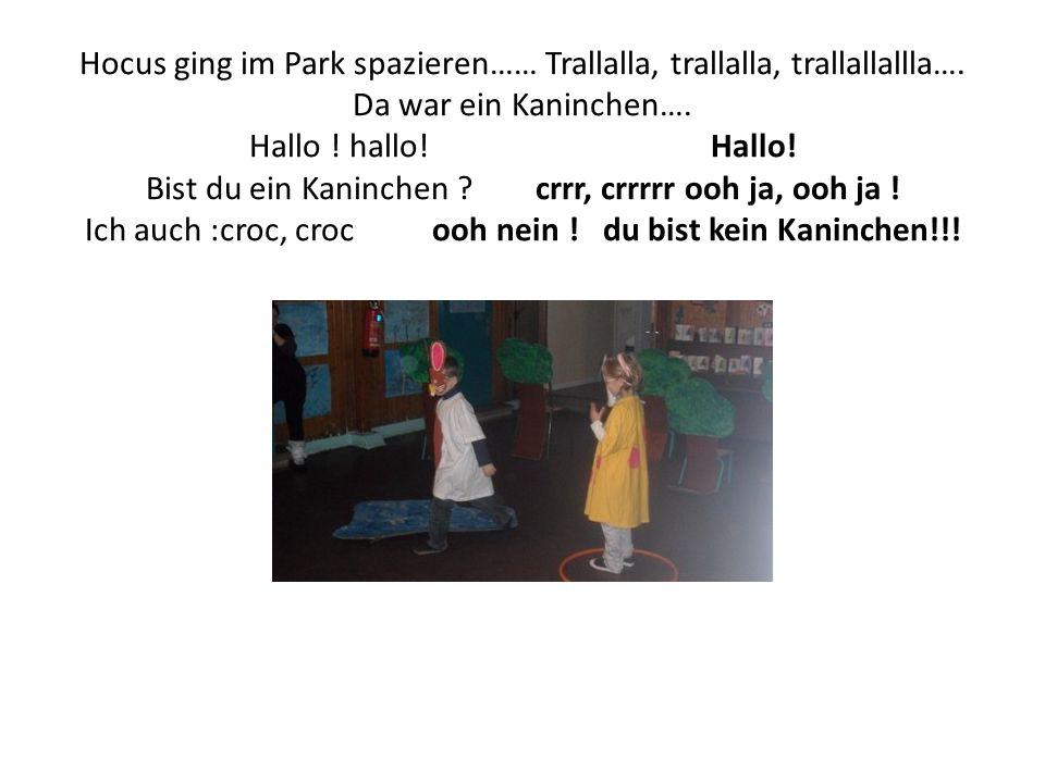 Hocus ging im Park spazieren…… Trallalla, trallalla, trallallallla…. Da war ein Kaninchen…. Hallo ! hallo! Hallo! Bist du ein Kaninchen ? crrr, crrrrr